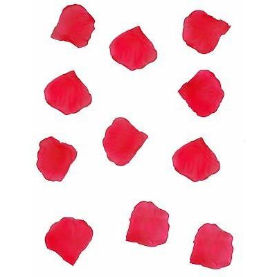 48020 - Pétales de Roses